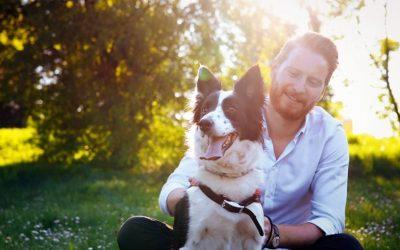 Ben jij je bewust van je eigen gedrag in contact met je hond en wat dit met hem doet?
