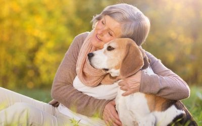 Ben ik te beschermend naar mijn hond? Moet ik strenger zijn en meer doorpakken?