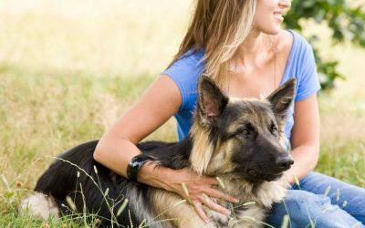 Een plotselinge terugval in de training met je hond is vervelend, maar het hoort er echt bij…