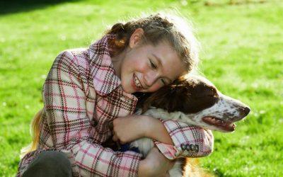 """Zie jij het wanneer jouw hond """"Nee"""" tegen je zegt? Ook onze honden kunnen """"Nee"""" tegen ons zeggen."""