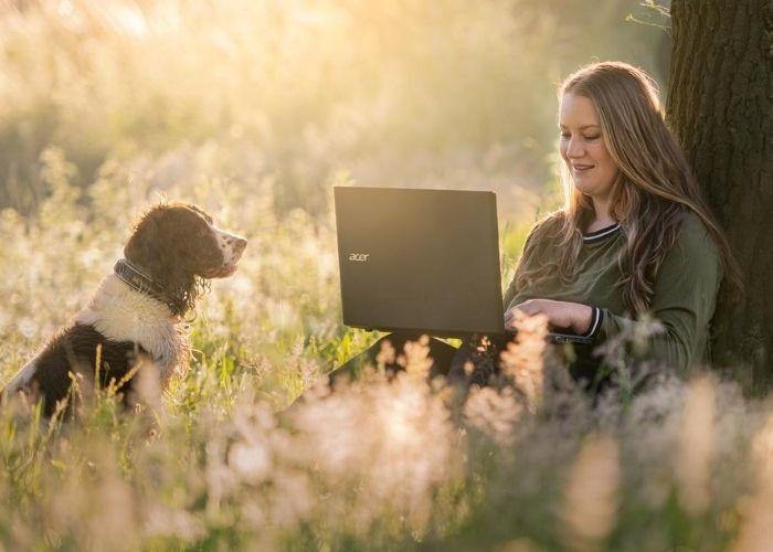Videobel consult gedragsproblemen hond